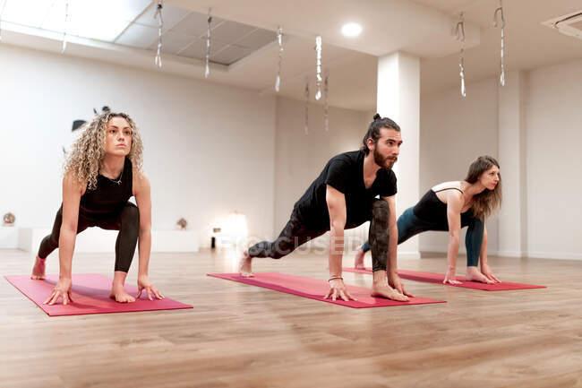 Спокойные женщины и мужчина сосредоточены на растяжении делая высокий выпад позы на йоге класса — стоковое фото