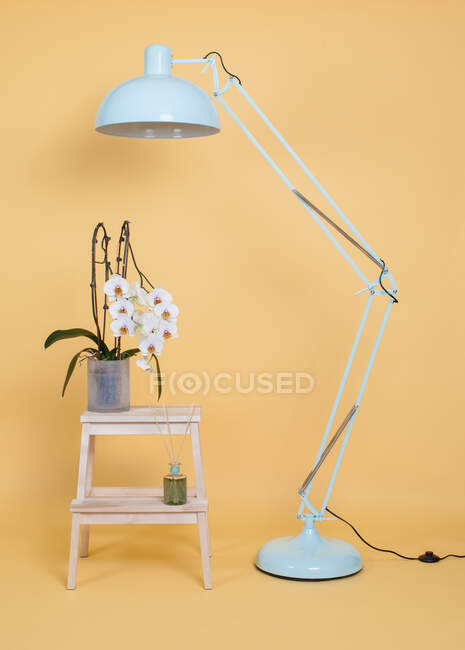 Modern white floor lamp placed near wooden stool with potted flowers against yellow wall in studio — Stock Photo