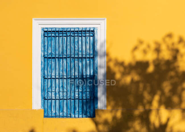 Shut window with shabby blue wooden shutters on bright yellow wall of building in sunshine — Stock Photo