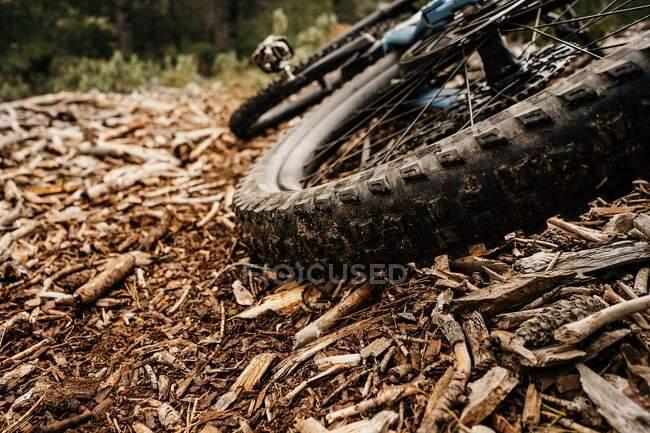 Vélo avec pneu sale placé sur un tas de copeaux de bois sec sur le sol en forêt — Photo de stock