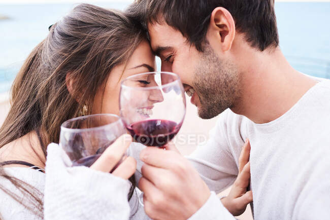 From above cheerful young couple in casual wear toasting with glasses of red wine while enjoying happy moments together — Stock Photo