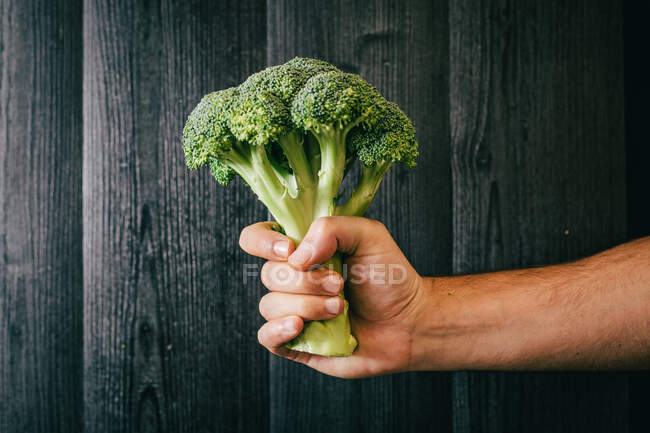 Unrecognizable person grasping and showing healthy fresh broccoli against black lumber wall while being on diet — Stock Photo