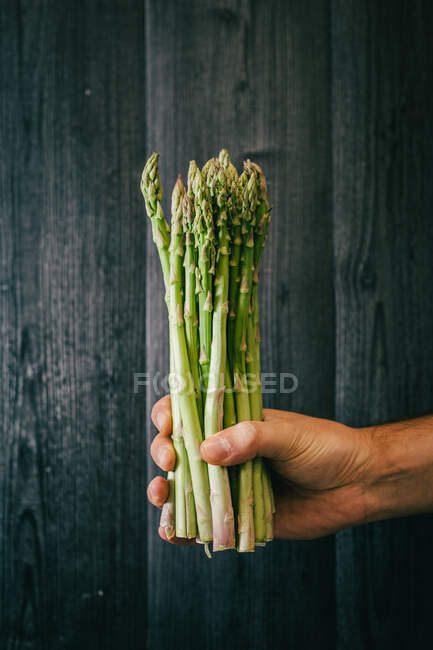 Unrecognizable person holding and showing a bunch of healthy fresh green asparagus against black lumber wall — Stock Photo
