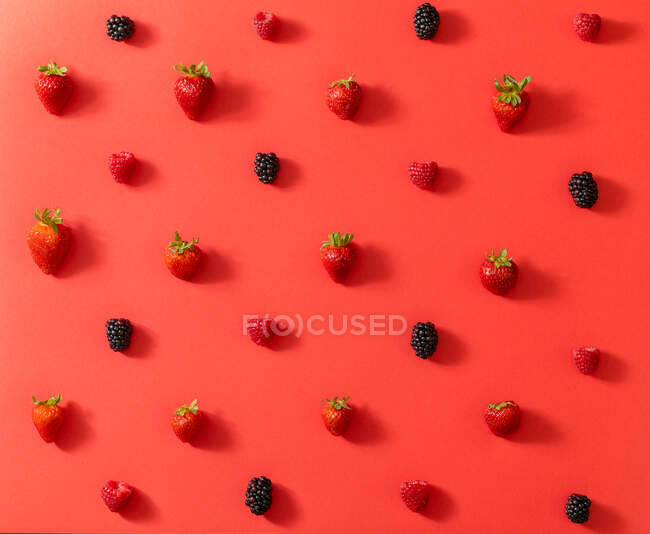 From above top view of fresh blackberry placed in line with ripe strawberries in summer berries composition on red surface background — Stock Photo
