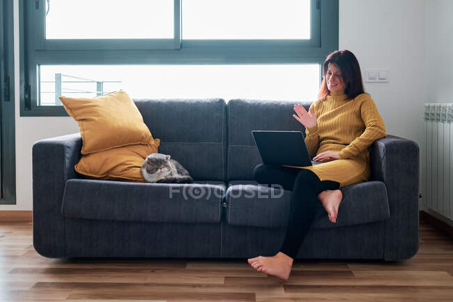 Woman working at home during coronavirus outbreak with her cat on the couch — Stock Photo