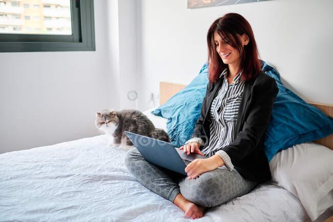 Donna esecutiva su pigiami sul suo letto utilizzando laptop e il suo esotico gatto lavoro a casa concetto — Foto stock