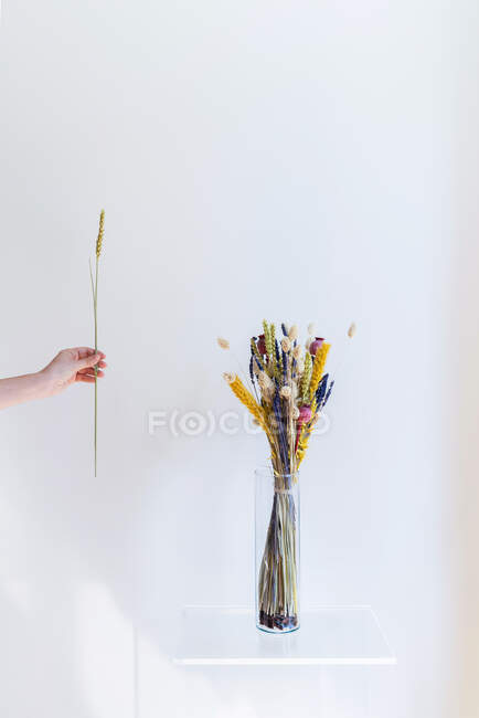 Hand holding dry flower and vase with bouquet on shelf — Stock Photo