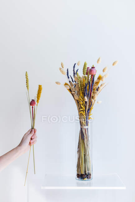 Hand holding dry flowers with bouquet in vase on shelf — Stock Photo