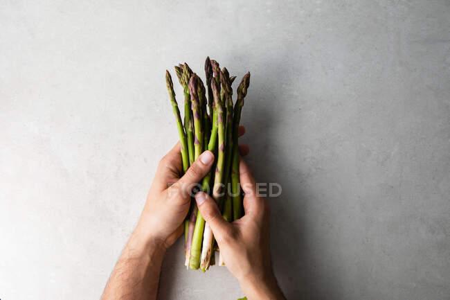 Руки держат кучку свежей спаржи. — стоковое фото