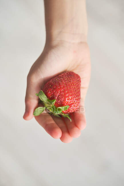 From above top view of anonymous kid demonstrating fresh strawberry on his hand on blurred background — Stock Photo