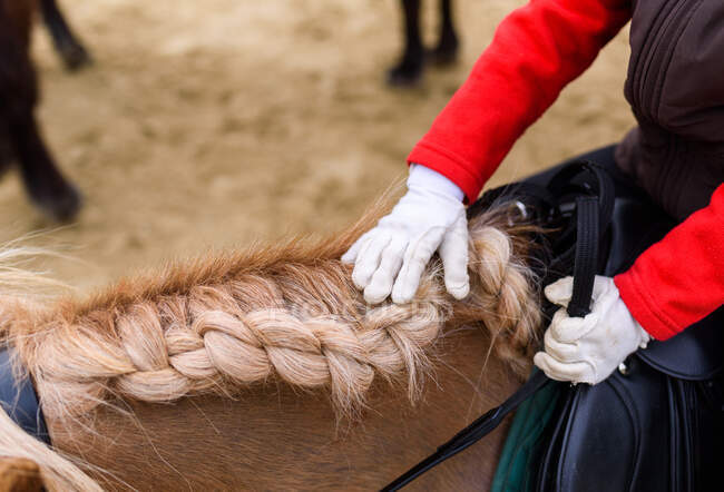 From above anonymous kid in jockey costume and gloves touching braided mane while riding pony on arena during training in equestrian school — Stock Photo