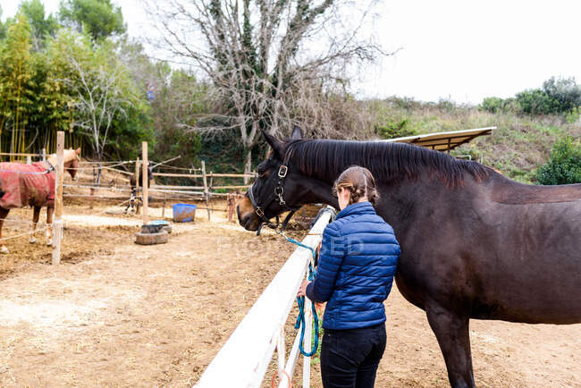 Back view of anonymous teen girl in blue jacket tying reins of brown horse to paddock barrier during training in equestrian school — Stock Photo