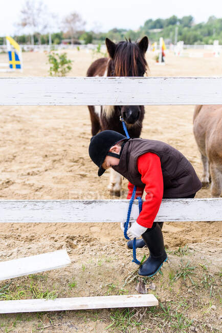 Side view of little boy tying reins of brown pony horse to paddock barrier during training in equestrian school — Stock Photo