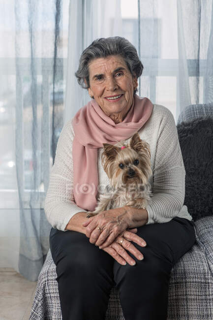 Elderly female looking at camera with adorable Yorkshire Terrier while sitting on sofa at home during coronavirus pandemic — Stock Photo