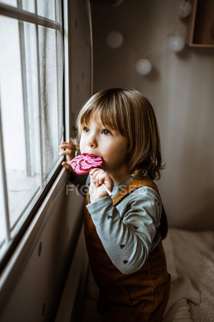 Adorable little girl in casual clothes sucking sweet lollipop and looking out window while resting in cozy room at home — Stock Photo