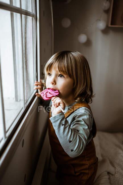 Очаровательная маленькая девочка в повседневной одежде сосет сладкий леденец и смотрит в окно во время отдыха в уютной комнате дома — стоковое фото