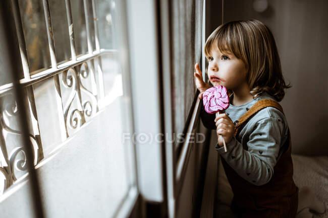 Adorable niña en ropa casual chupando piruleta dulce y mirando por la ventana mientras descansa en la acogedora habitación en casa - foto de stock