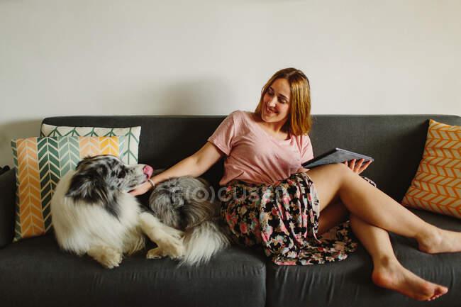Positivo donna a piedi nudi con tablet sorridente e coccole carino Collie mentre seduto su comodo divano a casa — Foto stock