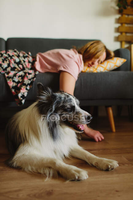 Vista lateral da mulher adulta tocando engraçado Collie enquanto dorme no sofá confortável em casa — Fotografia de Stock