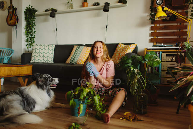 Barefoot happy woman with long hair looking at camera sitting on floor near furry Collie and tending potted plant with dry leaves in cozy living room at home — Stock Photo
