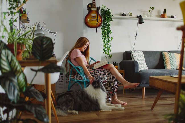 Side view of barefoot woman reading interesting book and scratching head of loyal Collie while sitting on comfortable chair and resting in weekend at home — Stock Photo