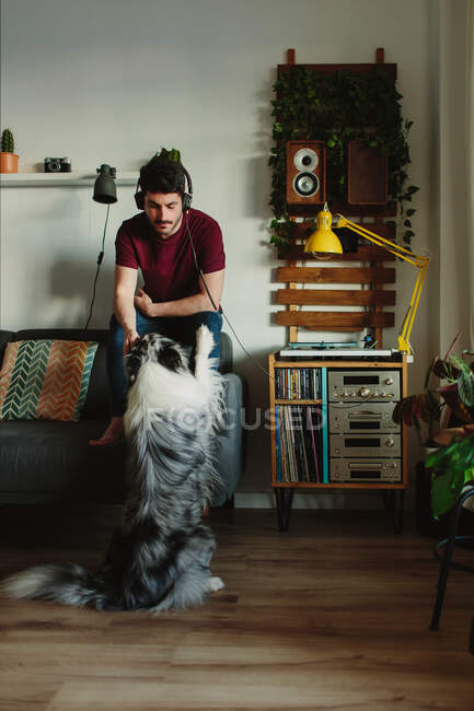 Guy in headphones listening to music on turntable and playing with Collie while sitting on sofa at home — Stock Photo