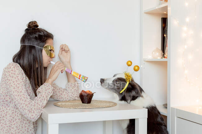 Side view of female with party mask and blower sitting at table with muffin and celebrating birthday with border collie during coronavirus pandemic — Stock Photo