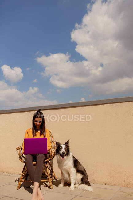 Femme heureuse travaillant sur un ordinateur portable sur la terrasse pendant la quarantaine tandis que Border Collie assis près de la journée ensoleillée — Photo de stock