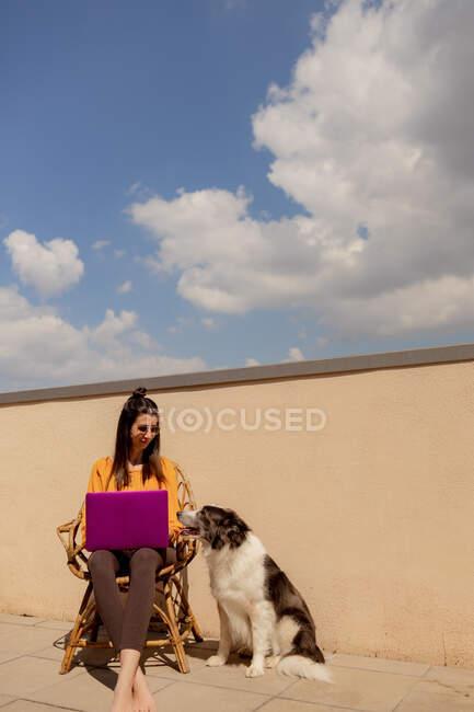 Bruna donna in abito casual seduto sulla sedia e la navigazione netbook viola mentre si lavora e godersi il sole in terrazza di casa durante la quarantena — Foto stock