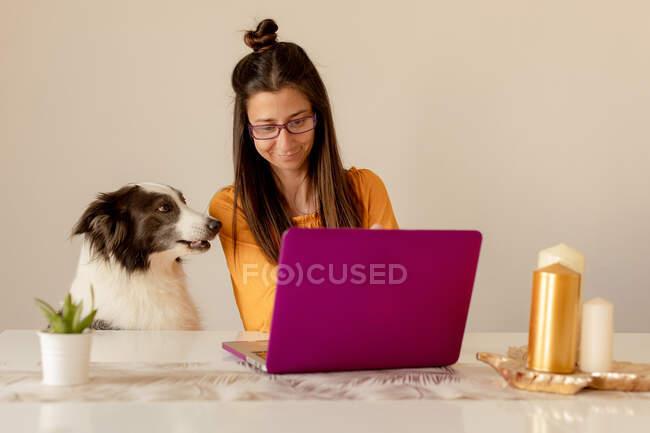 Весела жінка грає з собакою вдома. — стокове фото