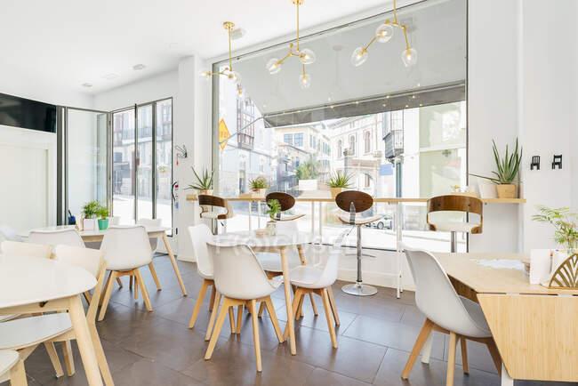 Interior de amplio restaurante contemporáneo de luz con grandes ventanas decoradas con plantas exóticas y acogedoras sillas en las mesas bajo lámparas colgantes creativas - foto de stock