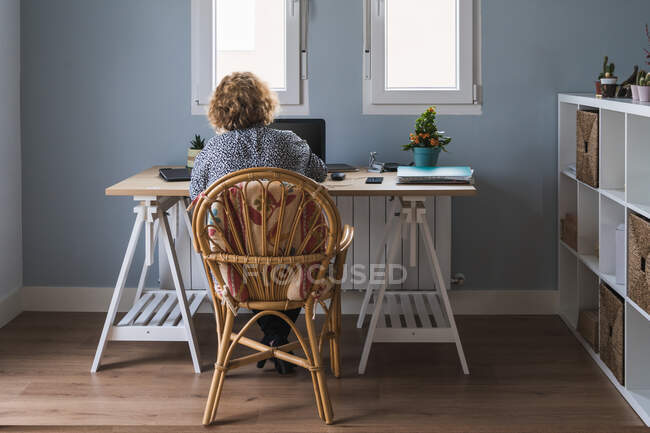Back view of adult woman in casual clothes working on laptop in earphones at room decorated with cactuses in ceramic pots — Stock Photo