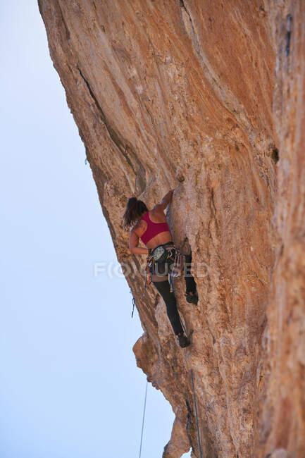 Dal soffietto attivo alpinista femminile in abbigliamento sportivo con corda e attrezzatura di sicurezza salendo pendio roccioso di alta montagna nella giornata di sole — Foto stock