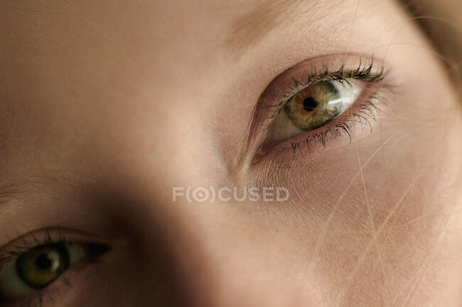 Closeup crop young woman with beautiful green eyes and clean skin looking at camera — Stock Photo