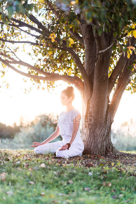 Side view of calm young female in white wear sitting on knees and holding Tibetan singing bowl in hands while going yoga and relaxing on lawn in summer day — Stock Photo