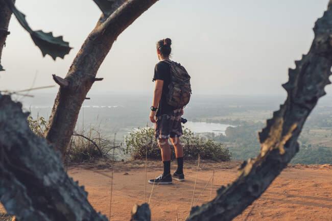 Обратный вид на молодого неузнаваемого мужчину-путешественника в повседневной одежде, стоящего на краю скалы против величественного ландшафта зеленого леса и безоблачного голубого неба на закате — стоковое фото