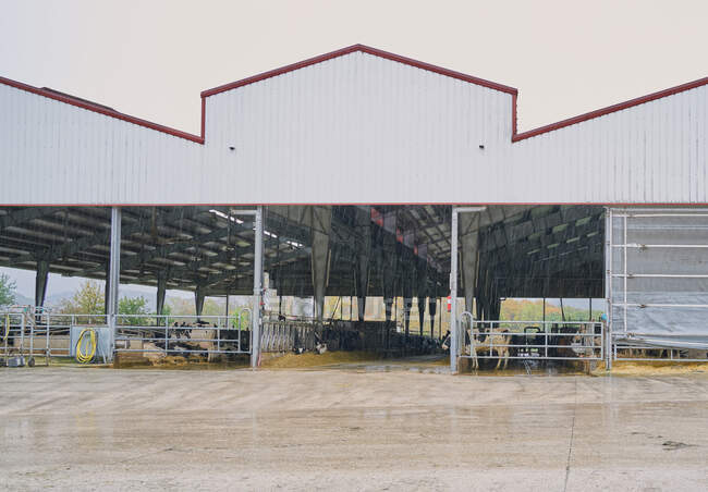 Купальня з металевим парканом і прилавками під металевим дахом з подвір