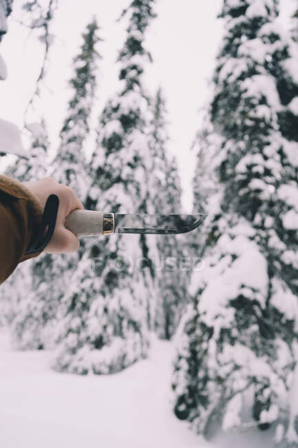Male hand holding professional knife in snowy winter forest — Stock Photo