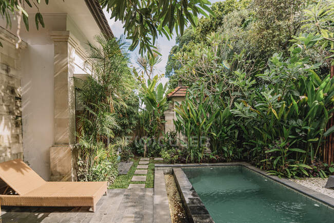 Уютный дворик с бассейном в окружении тропических растений и гамака на Бали — стоковое фото