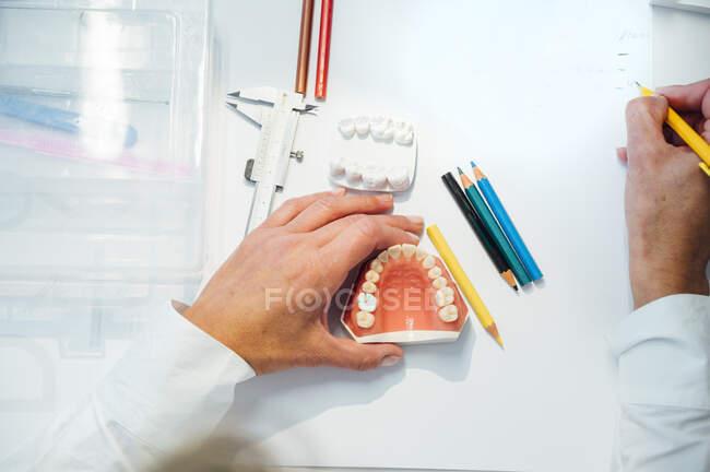 Desde arriba del cultivo ortodoncista con lápiz en mano trabajando con molde dental blanco en la mesa con equipo profesional - foto de stock