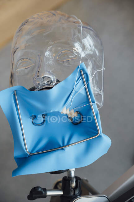 Desde arriba de la presa de caucho azul instalado en el maniquí de plástico durante la formación en el tratamiento dental en el curso de odontología - foto de stock