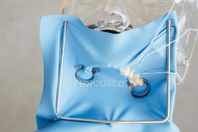 Dall'alto della diga in gomma blu installata sul manichino in plastica durante l'allenamento in odontoiatria — Foto stock