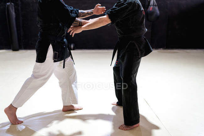 Side view of cropped unrecognizable male martial art masters fighting while practicing self defense technique during kajukenbo training in modern club — Stock Photo