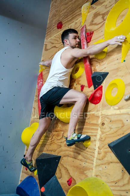 Dal soffietto vista laterale di forte atleta maschile in abbigliamento sportivo arrampicata su parete colorata durante l'allenamento in ragazzo moderno — Foto stock