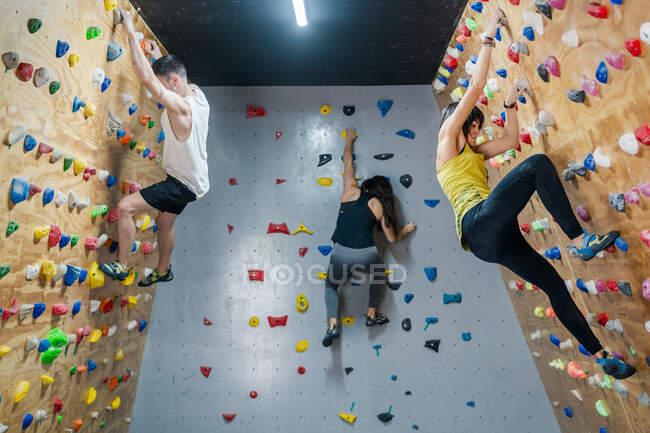 Вид сбоку на молодую группу сильных мужских и женских альпинистов, тренирующихся на стене в современном тренажерном зале — стоковое фото