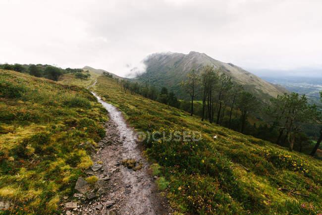 Vue panoramique sur les collines verdoyantes avec des nuages bas — Photo de stock