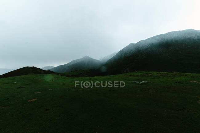 Thick fog floating over calm green mountainous landscape — Stock Photo