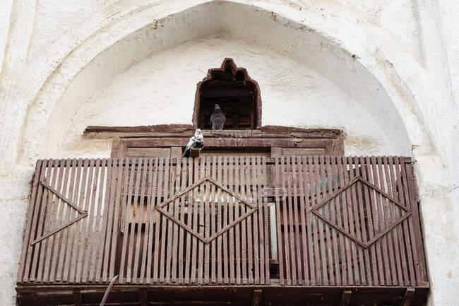 De baixo de par de pombos sentados em varanda de madeira intemperada de edifício antigo com janela arqueada e parede de pedra shabby na cidade de Jeddah, na Arábia Saudita — Fotografia de Stock