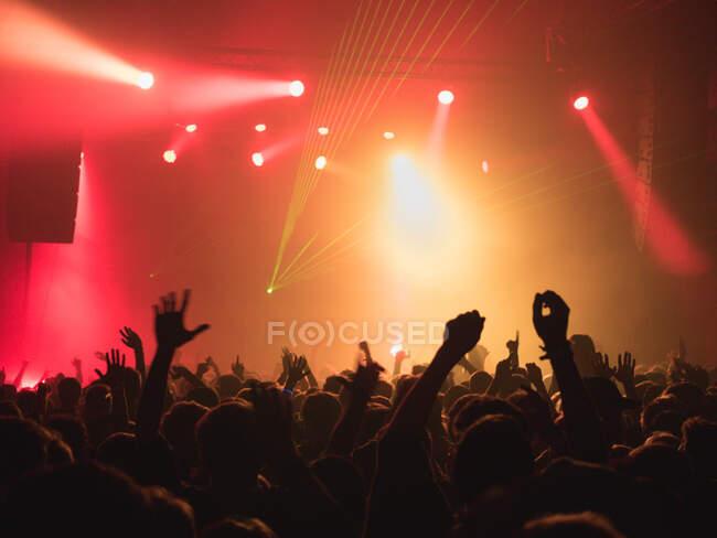 Силуэты заднего вида людей против освещения светом сцены во время музыкального исполнения — стоковое фото