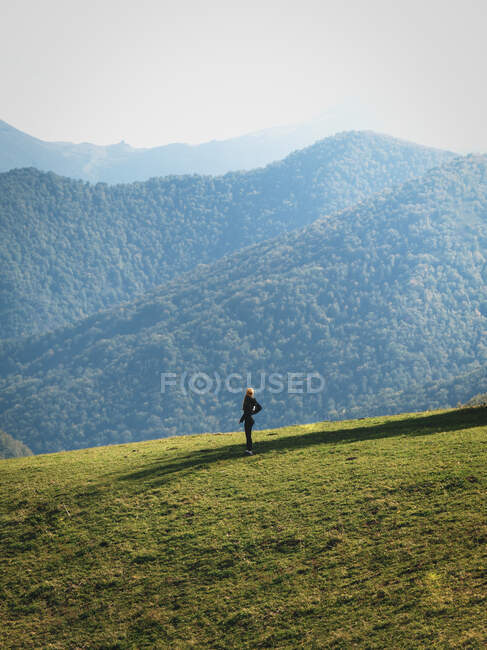 Side view of hiker admiring majestic scenery of mountains covered with green forests — Stock Photo